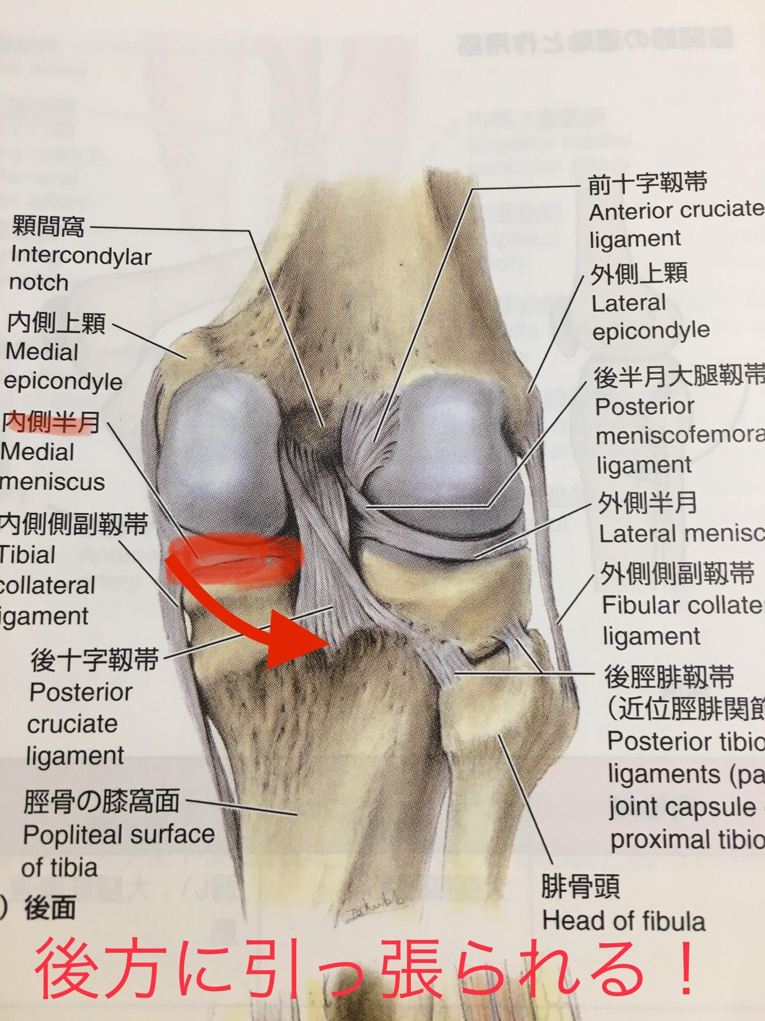 を 進める 膝